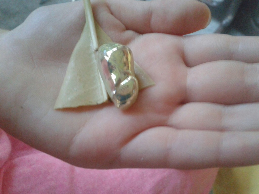 That is a golden cocoon of an unidentified creature